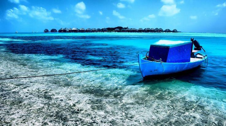 sea more...