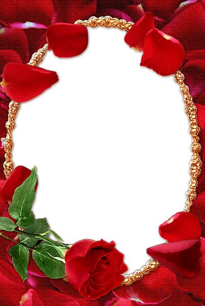 Rose Transparent Frame