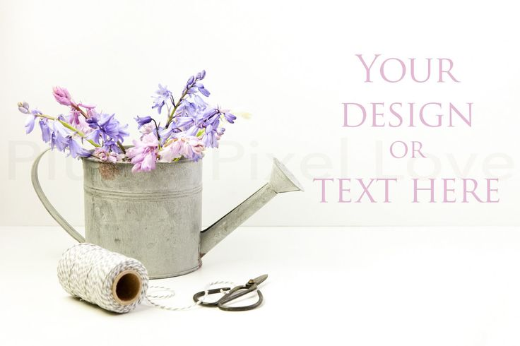 Styled Stock Photos | Bluebells | instagram | Overlay text | Digital Image | business promotion | copy space | watering can | feminine SSP57 by plumspixellove on Etsy