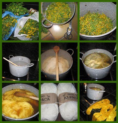 Gebreidesjaals wilde dolgraag nog iets proberen. Wolverven met boerenwormkruid, gele bloemen, die vroeger als eeuwenoud medicinaal recept g...