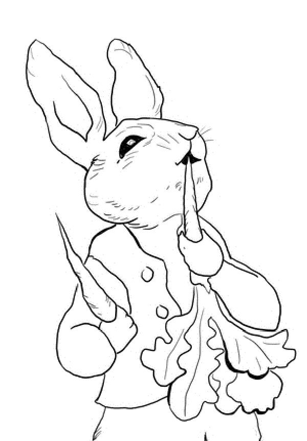 Peter rabbit Coloring pages and