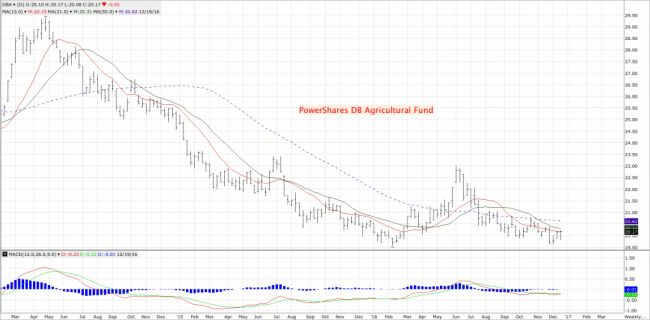 Morning Grain Market Commentary