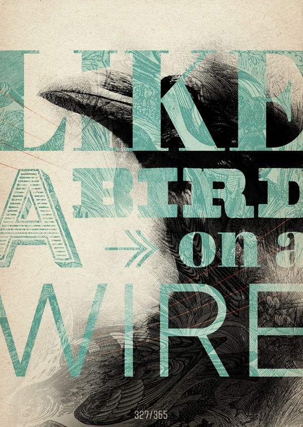 The best typography designs and typography we