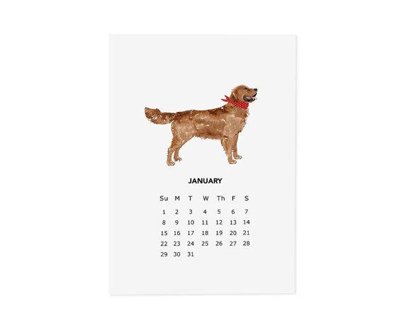 Calendario magnetico cane 2017