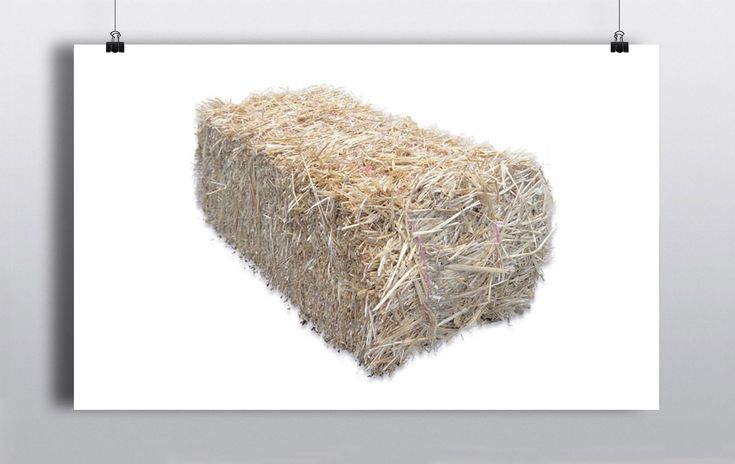 An authentic western night would not be complete without a few hay bales.  They can be used as seating, games or even just as simple props. http://www.prophouse.ie/portfolio/hay-bales/