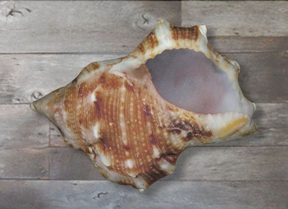 1000 images about Shell Shaped Pillows on