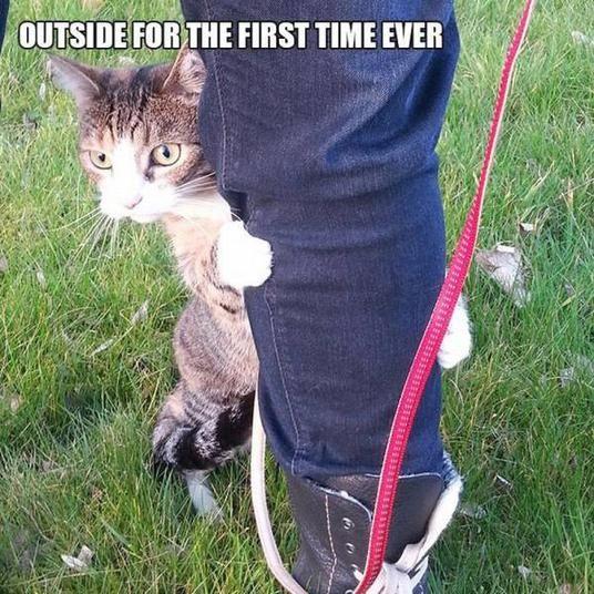 Erstes Mal draußen