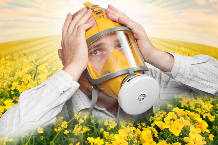 #HEALTH HOW TO SURVIVE #HAYFEVER.If you've got any of the hayfever symptoms - running nose, itchy red eyes, or regular sneezing - here's your guide to living with it. There's no cure, after all.