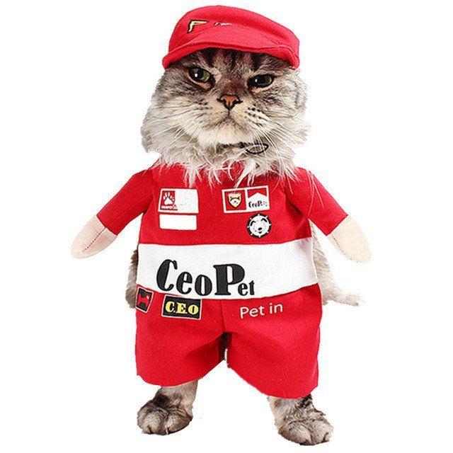 Funny Cat Costume