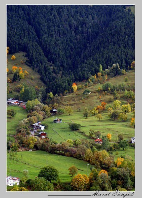 ✿ ❤ Doğa harikası Artvin, Turkey.