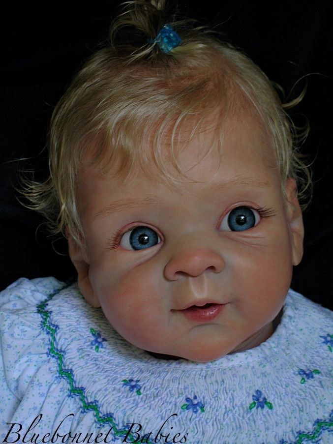 1000 Images About Bluebonnet Babies On Pinterest