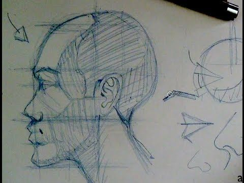 Drawing Head & Face Proportions | How to draw the head in profile view This man is an AMAZING teacher!!!