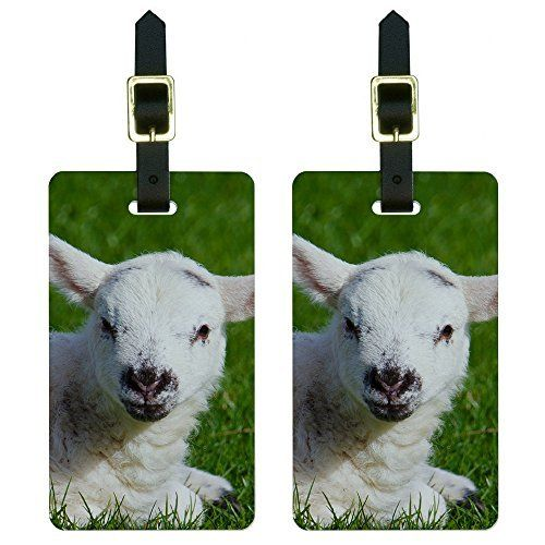 New Trending Luggage: White Baby Lamb Luggage Tags Suitcase Carry-On ID Set of 2. White Baby Lamb Luggage Tags Suitcase Carry-On ID Set of 2  Special Offer: $8.99  488 Reviews This set of two awesome, printed luggage tags will set your luggage apart in style. The tags are made of durable plastic with a card for contact information on the back. Includes leather...