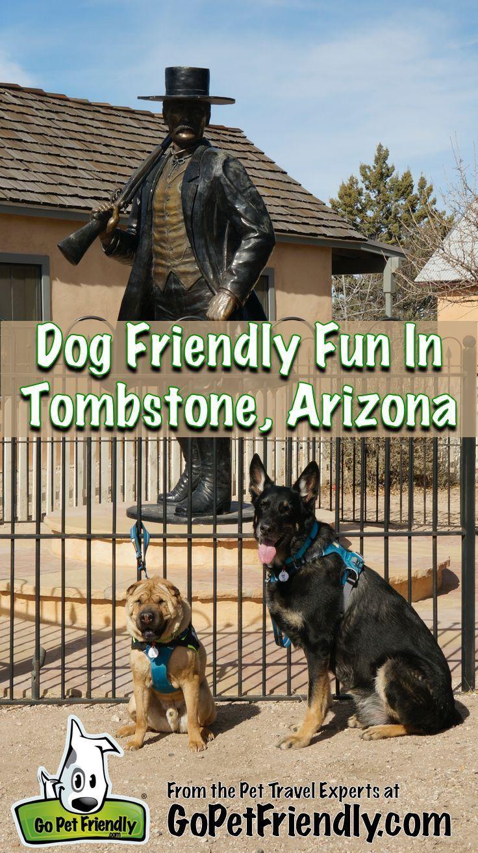 Pet Friendly Fun In Tombstone Arizona Dog Friends Road Trip With Dog Pet Travel