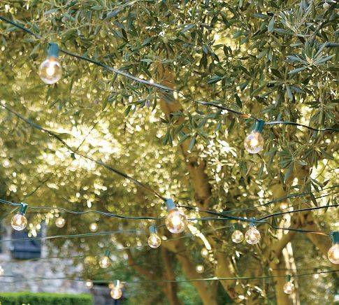 GLOBE STRING LIGHTS  $15.00    8 blubs, 18'