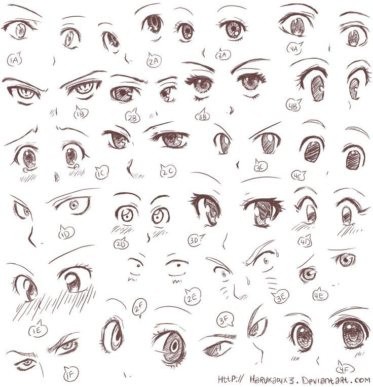 ... Eyes, Animal Eye, Art, Drawing Ideas, Animal Drawing, Drawing Animal