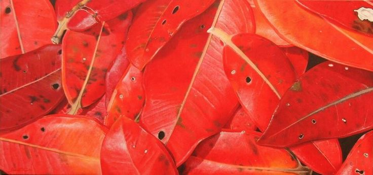 Red pohutukawa leaves - NZ native plant, oil on canvas - by Cherith Curtis