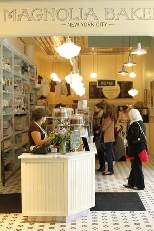 If I ever go to NYC, I'm going to check out the Magnolia Bakery!