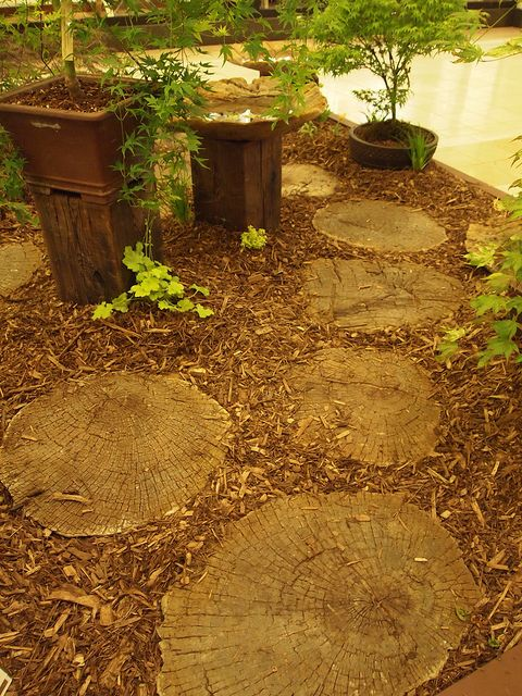 Nice paving using tree trunk slices by dewelch, via Flickr. Awesome way to reuse a tree after you've had to cut it down.