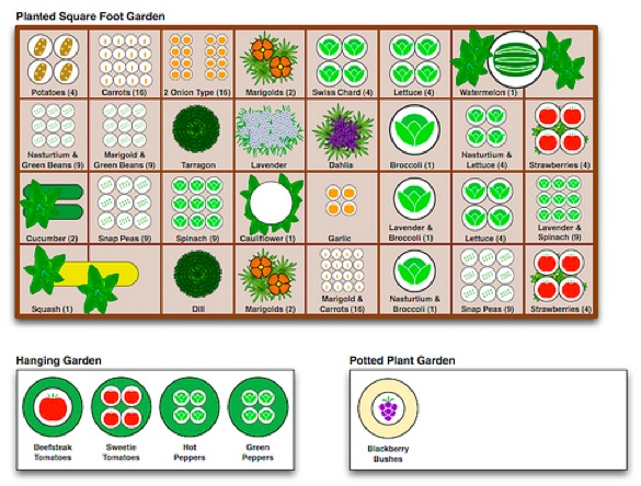 Square Foot Garden Plan. 17 Best images about SQUARE FOOT GARDENING on Pinterest   Gardens