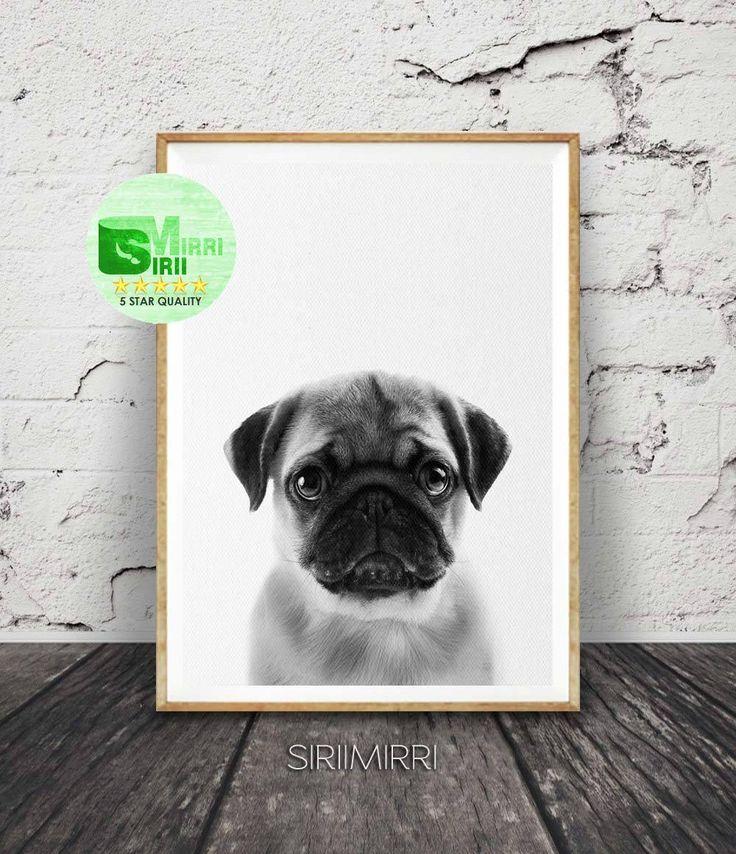 Pug print pug wall art pug art dog print dog art pug poster pug gift dog poster pug black print pug photography animal print