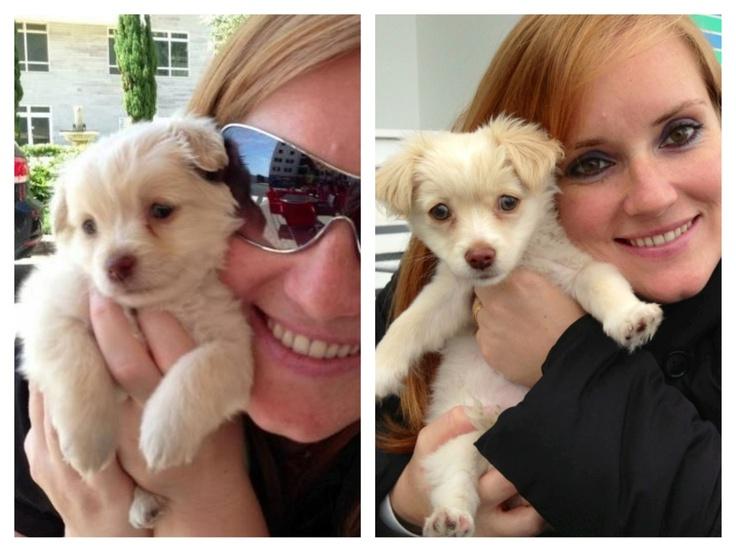 Antes e o depois no espaço de 1 mês!