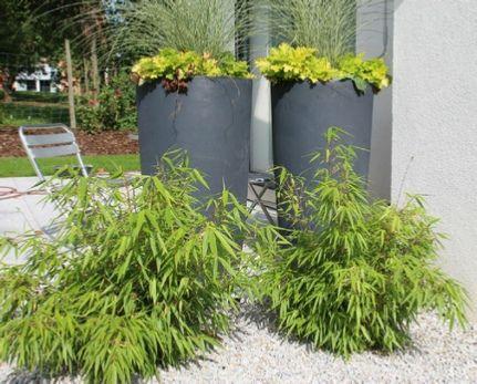 Best 39 Jardin Aménagement extérieur par Eden-Design.fr images on ...