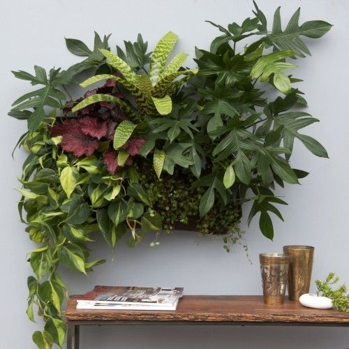 omg. living wall vertical garden by flora grubb. yes, please.
