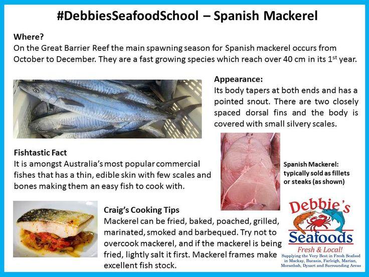 #Spanish #Mackerel #EatMoreFish #ShopLocalBuyLocalMackay
