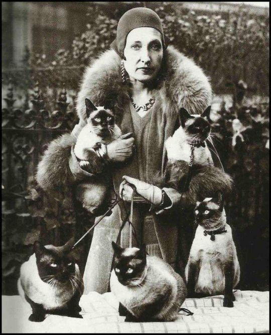 Cat lady [1930s] - me in the future!!