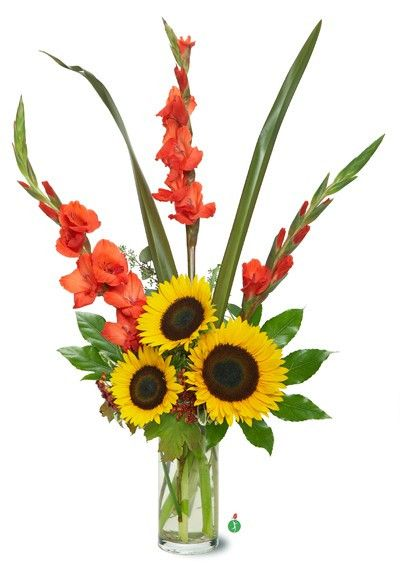 Sunflowers are wonderfully cheerful flowers, with big, bold yellow faces that remind us of the sun and this glorious arrangement of three bright sunflowers arranged with orange gladioli is like a colo