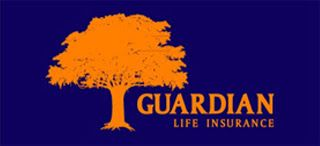 Financial Associate  Guardian Life Insurance Limited  Vacancy  100  Job Context    Visiting potential customers to prospect for new busin...