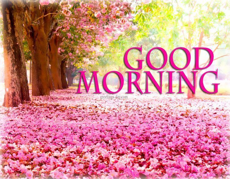 Guten Morgen Good Morning Buenos Dias Lied : Best guten morgen schönen tag images on pinterest