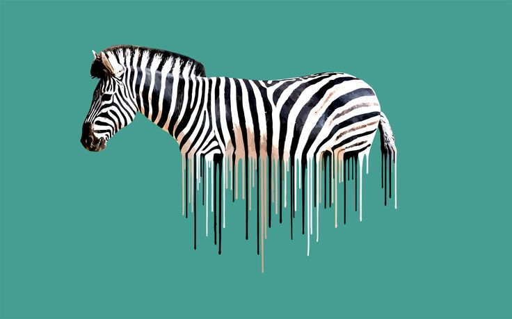 Zebra - Green £250.00  By Carl Moore 50 x 80 cm | Photo Rag Paper | Giclee Print Taken from the Dripster series. Bold, colourful animals with their clear markings are reduced down to individual drips of paint, which appear almost barcode like in their simplicity.  http://www.deepwestgallery.co.uk/product-page/53b12b6f-6cf1-965f-66bb-db02d8846ec1