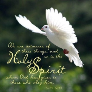 84 best gifts of the holy spirit images on pinterest bible the holy spirit of god negle Images