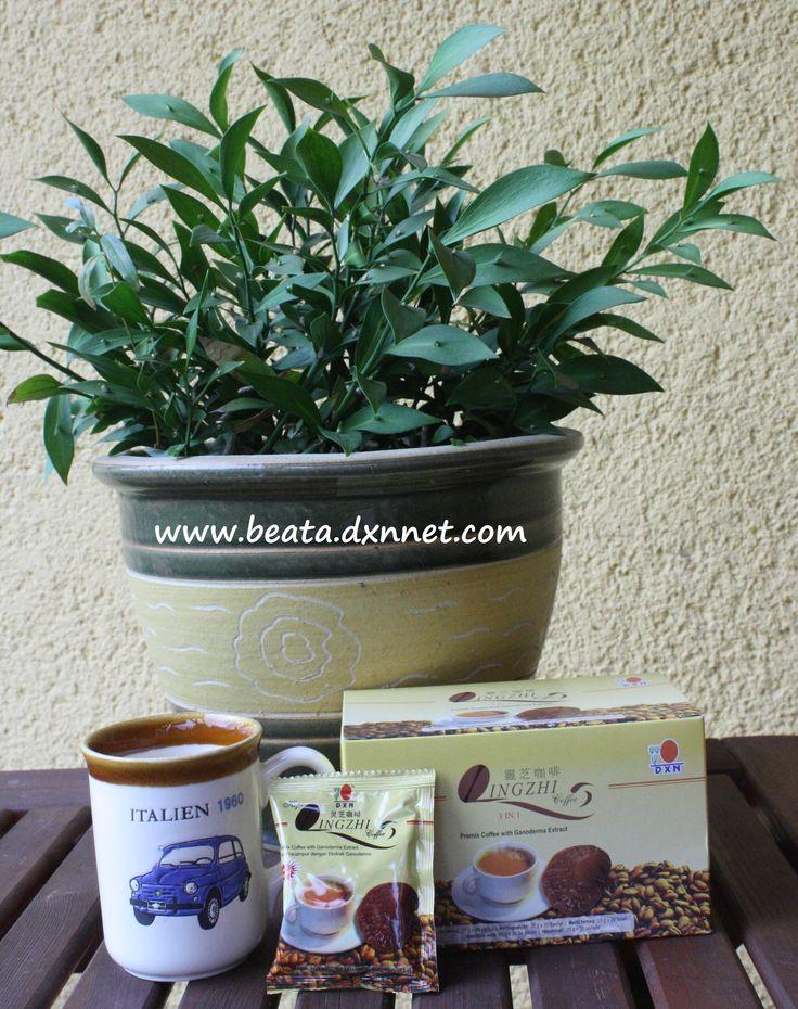 http://beata.dxnnet.com/