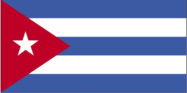 the flag in spanish