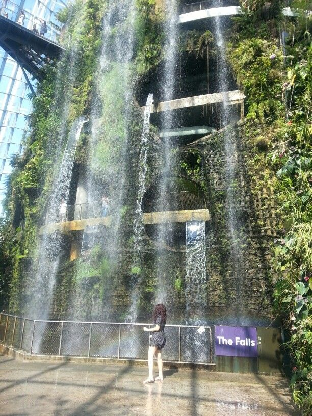 Cloud Forest - Gardens by the Bay -Singapore