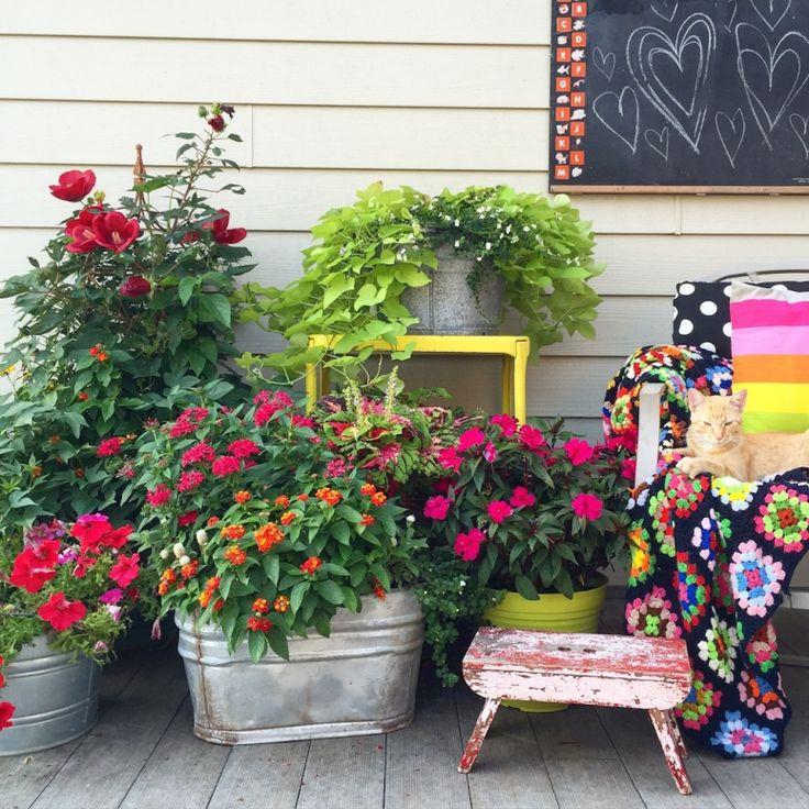 Meg Duerksen's Deck | Outdoor Living Inspiration