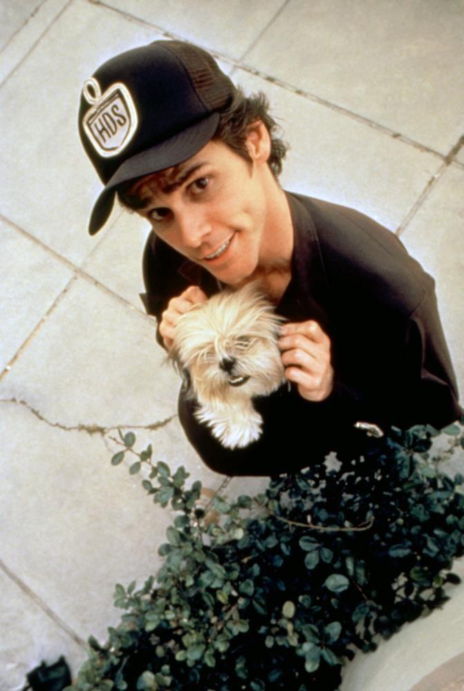 ACE VENTURA: PET DETECTIVE, Jim Carrey, 1994 | Essential Film Stars, Jim Carrey http://gay-themed-films.com/film-stars-jim-carrey/