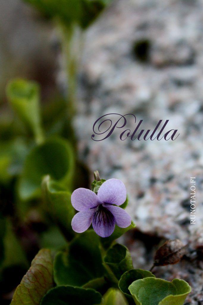 Polulla-voimaruno & voimakortit viikko 12-2017 - Runotalo