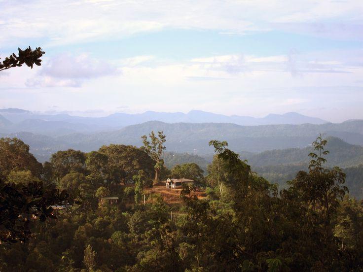 Elkaduwa in Central Sri Lanka near Kandy
