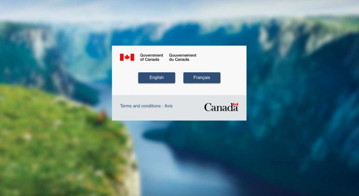 Government Of Canadas Immigration Website Crashed On Tuesday Night http://www.chaostrophic.com/government-canadas-immigration-website-crashed-tuesday-night/