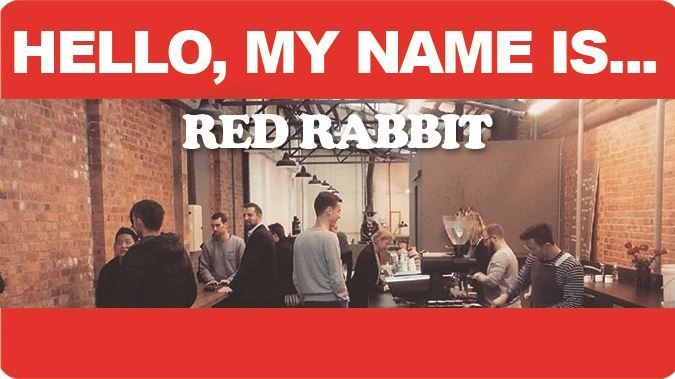 Hello... My Name Is Red Rabbit - nzgirl