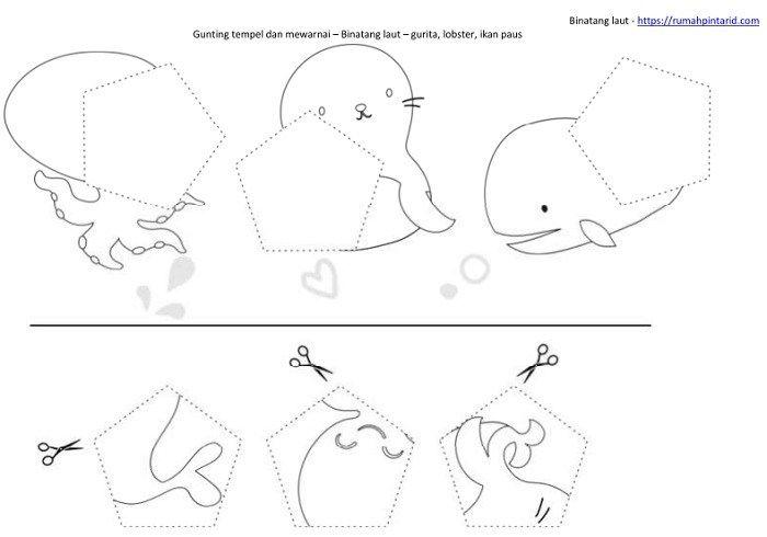 Bentuk Geometri Dasar Untuk Anak Anak Dan Hewan Laut Untuk Anak