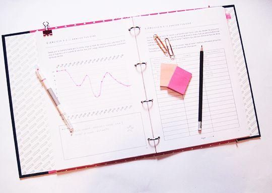 revision anual agenda