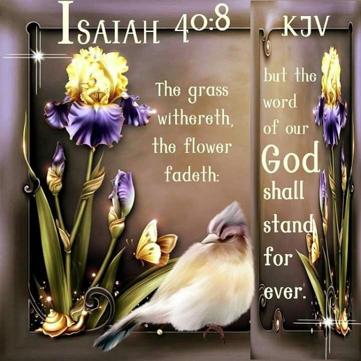 Isaiah 40:8 KJV