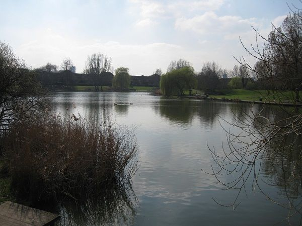 Gallions Lake and Canal - THAMESMEAD TOWN ANGLING CLUB - Gallions Lake has depths between 3ft going up to 5ft in places some parts are made up of gravel beds and the rest is silt there are some big carp in t... Check more at http://carpfishinglakes.com/item/gallions-lake-canal-thamesmead-town-angling-club/