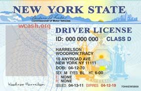 Template New York drivers license editable photoshop file .psd