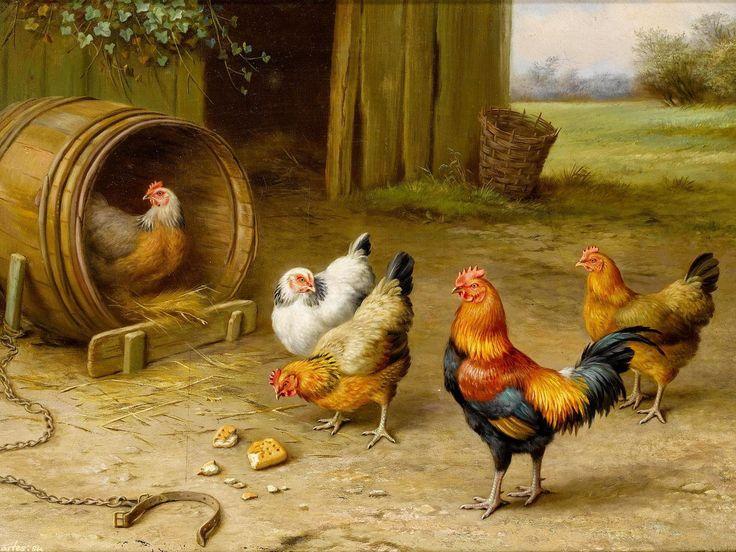 Куры под одной крышей живут в мире и согласии, а два петуха никогда не могут ужиться в одном курятнике - уж такова их природа.